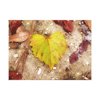 Leaf Wrapped Canvas Print