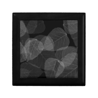 Leaf X-Ray Gift Box