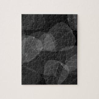 Leaf X-Ray Jigsaw Puzzle