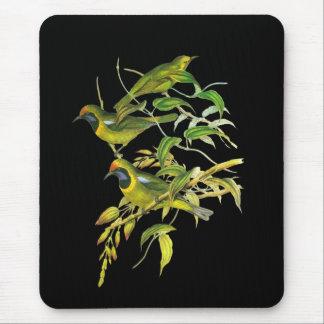 Leafbird De oro-afrontado Alfombrillas De Ratón