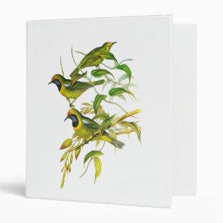 "Leafbird De oro-afrontado Carpeta 1"""
