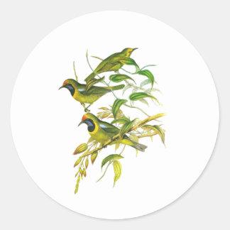Leafbird De oro-afrontado Pegatina Redonda