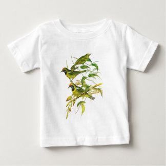 Leafbird De oro-afrontado Polera