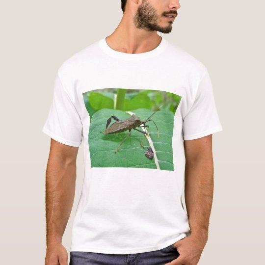 Leaffooted Bug (Acanthocephala fenorata) Items T-Shirt