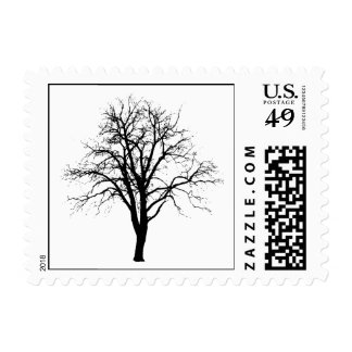 Leafless Tree In Winter Silhouette Stamp