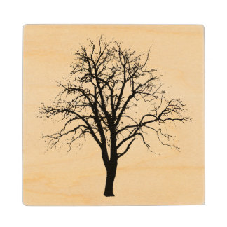 Leafless Tree In Winter Silhouette Wooden Coaster