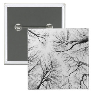 Leafless Trees in Thiepval Wood Pinback Buttons