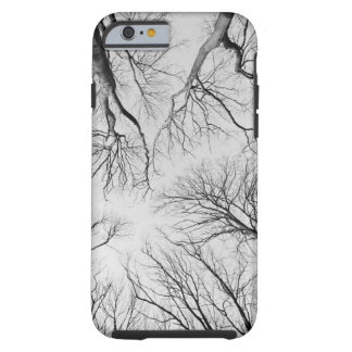 Leafless Trees in Thiepval Wood Tough iPhone 6 Case