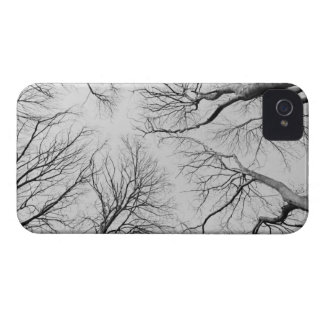 Leafless Trees in Thiepval Wood Case-Mate iPhone 4 Cases