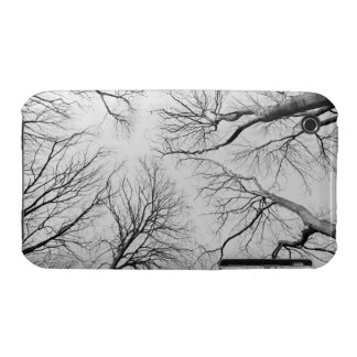 Leafless Trees in Thiepval Wood iPhone 3 Case
