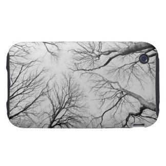 Leafless Trees in Thiepval Wood Tough iPhone 3 Case