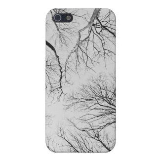 Leafless Trees in Thiepval Wood Cover For iPhone SE/5/5s