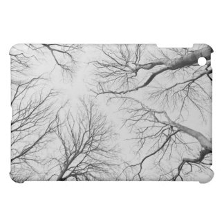 Leafless Trees in Thiepval Wood Cover For The iPad Mini