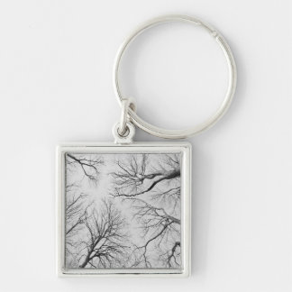 Leafless Trees in Thiepval Wood Keychain