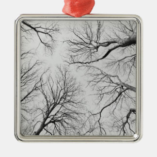 Leafless Trees in Thiepval Wood Metal Ornament