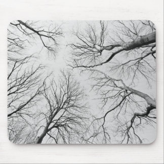 Leafless Trees in Thiepval Wood Mouse Pad