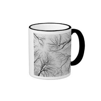 Leafless Trees in Thiepval Wood Mug