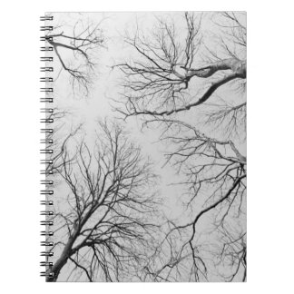 Leafless Trees in Thiepval Wood Spiral Notebook