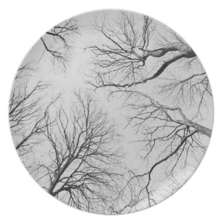 Leafless Trees in Thiepval Wood Dinner Plate