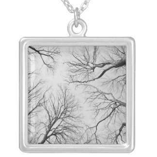 Leafless Trees in Thiepval Wood Silver Plated Necklace