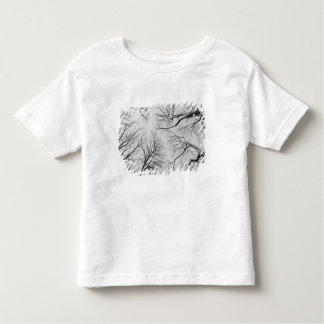 Leafless Trees in Thiepval Wood Toddler T-shirt