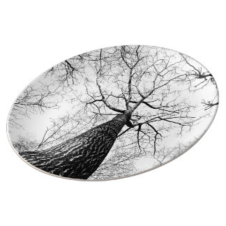 Leafless trees porcelain plate