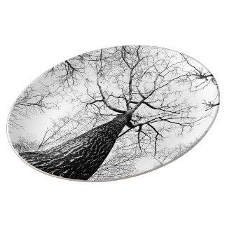 Leafless trees porcelain plate