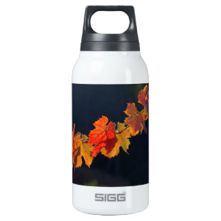 Leafs On A Twig Insulated Water Bottle