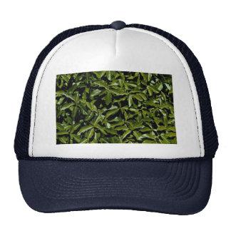 Leafy garden mesh hat