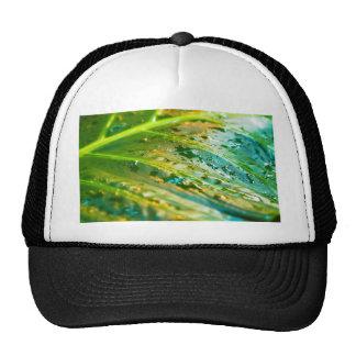leafy green mesh hats