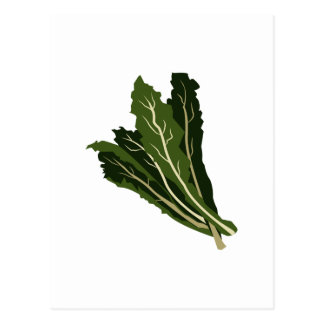 Leafy Greens Postcard