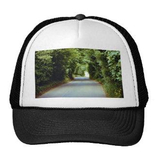 Leafy lane, Beach Cross, East Sussex, England Hat