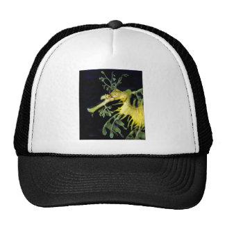 Leafy Sea Dragon Hat