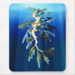 Leafy Sea Dragon Mousepad