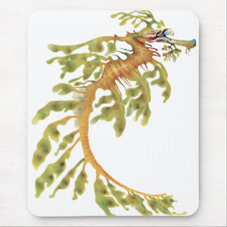 Leafy Seadragon Mouse Pad