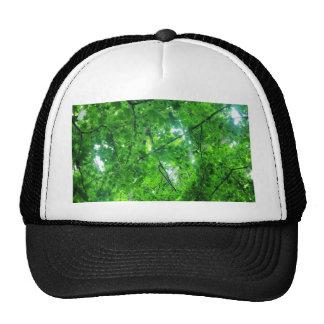 Leafy Tree Trucker Hats