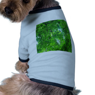 Leafy Tree Pet Shirt