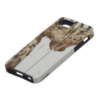 Lean in iPhone SE/5/5s case