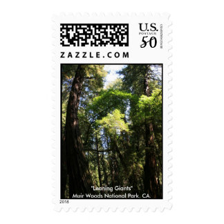 Leaning Giants of Muir Woods Postage