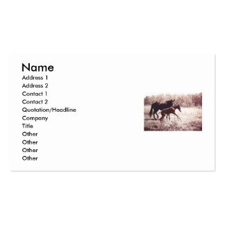 Leap For Joy Foal and Mare Business Card