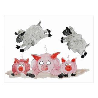 Leap Pig by Suffolk Sheep Postcard