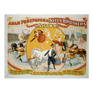 Leap Year Ladies / Clown Women Circus Poster Postcard