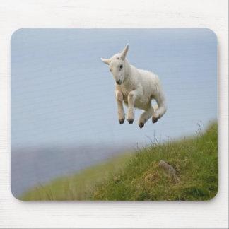 Leapin Lamb Mousepad