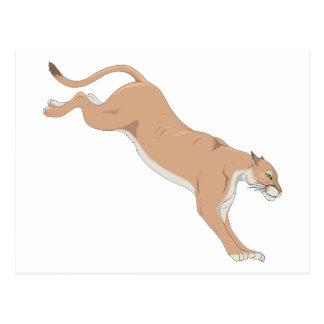 Leaping Cougar/Puma/Mountain Lion Postcard
