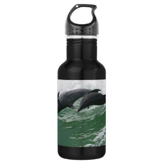 Leaping Dolphins Stainless Steel Water Bottle