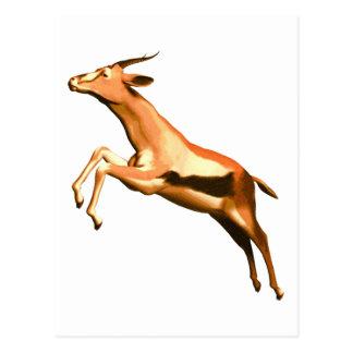 Leaping Gazelle Postcard