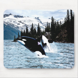 Leaping Orca Mouse Pad