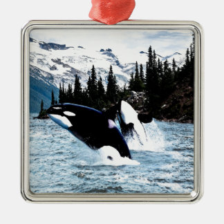 Leaping Orca Square Metal Christmas Ornament