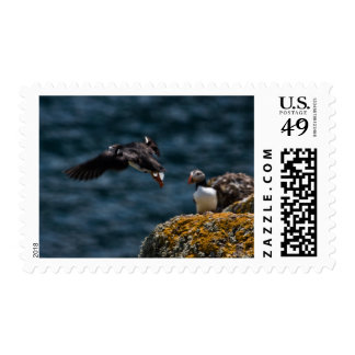 Leaping Puffin Postage