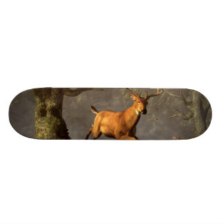 Leaping Stag Skateboard Decks
